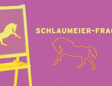 Feierwerk_Blog_Kurzwelle_Kinderredaktion_Schlaumeier_Pferdestärken_2