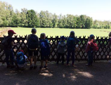 Feierwerk_Blog_Familie_Dschungelpalast_Pfingstferienausflüge_Wildpark_Poing (1)