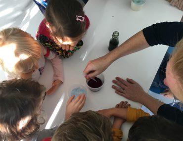 Feierwerk_Dschungelpalast_Forschen_für_Kinder_Andrea_Seidel_Blog (123)